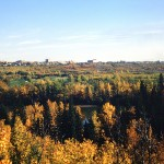 Autumn in Edmonton
