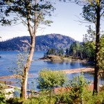 Brown bay above Seymour narrows
