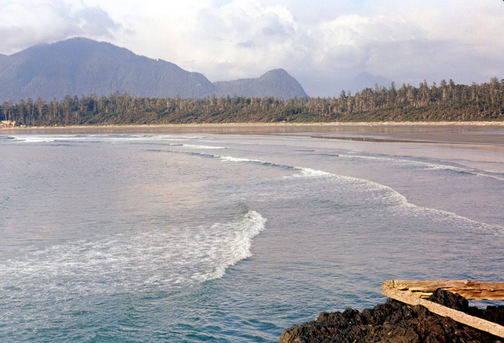 Cox bay - dads pick