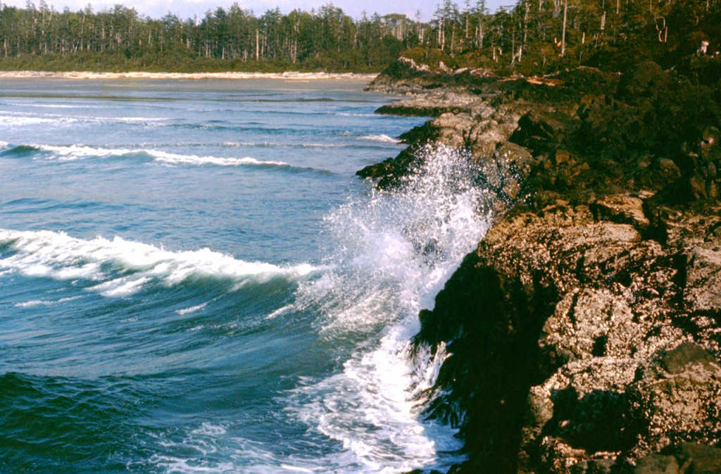 Cox point and Cox bay - dads pick