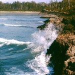 Cox point and Cox bay