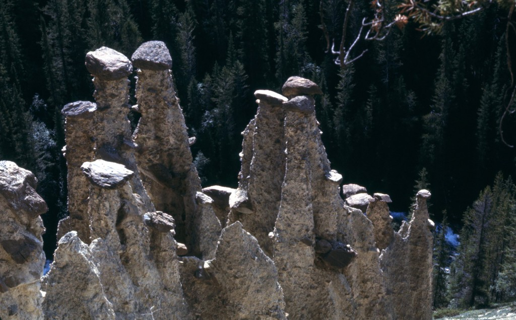 Hoodoos - dads pick