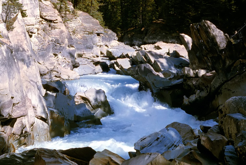 Kicking Horse Canyon - dads pick