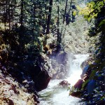 Little Qualicum river falls