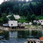 Minstel island settlement