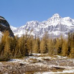 Mount Huber - Yoho national park 3