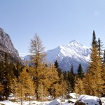 Mount Owen and McArthur pass - Yoho national park