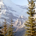 Mount Victoria - Yoho national park