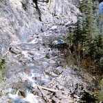 Mountain stream - Yoho