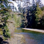 Muir creek