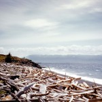 Otter point and Olympic mountains