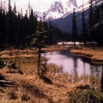Ottertail flats in Kicking horse valley and Chancellor peak