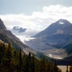 Peyto glacier and Peyto peak - Jasper national park