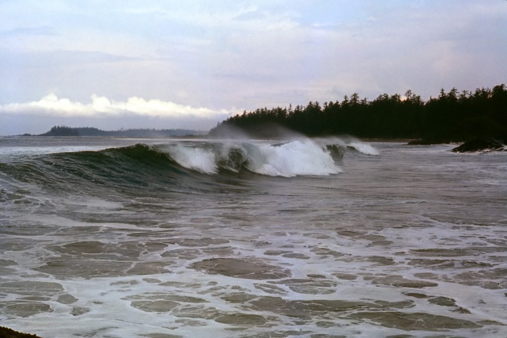 Waves at Sunset point - dads pick