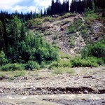 Williams creek gold rush mining